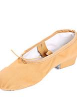 Non Customizable Women's Dance Shoes Canvas Canvas Ballet /Sneakers Low Heel Professional / PerformanceBlack /
