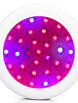1pcs Full Spectrum 300W  LED Grow Light lamp Red/Blue/White/UV/IR For hydroponics and indoor plants growing
