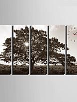 Moderno/Contemporaneo Altro Orologio da parete,Rettangolare Tela 24 x 70cm(9inchx28inch)x5pcs/ 30 x 90cm(12inchx35inch)x5pcs Al Coperto