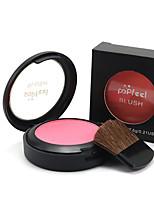 Popfeel Bronzer Pressed Natural Face Cheek Color Long Lasting Powder Blush Blusher Powder Makeup Palette&Brush Mirror