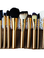 10 Makeup Brushes Set Goat Hair Portable Wood Face Others