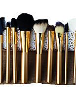 10 Brush Sets Kwast van geitenhaar Draagbaar Hout Gezicht Overige