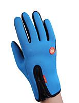 Winter Gloves Unisex Keep Warm Ski & Snowboard / Snowboarding Red / Black / Blue Canvas Free Size-Others