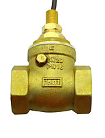 Copper Water Flow Switch G3/4 Diameter Brass Water Flow Sensor