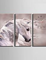 Moderno/Contemporáneo Animales Reloj de pared,Rectangular Lienzo 30 x 60cm(12inchx24inch)x3pcs/ 40 x 80cm(16inchx32inch)x3pcs Interior