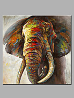 Single Modern Abstract Pure Hand Draw Ready To Hang Decorative The Elephant  Oil Painting