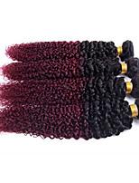 1 Stück Kinky Curly Menschliches Haar Webarten Brasilianisches Haar Menschliches Haar Webarten Kinky Curly