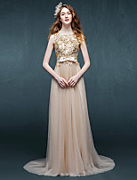 Formal Evening Dress Sheath / Column Scoop Sweep / Brush Train Tulle with Appliques / Sash / Ribbon