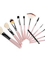 12 Makeup Brushes Set Goat Hair Portable Wood Face Others