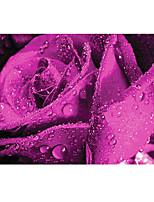 grand fond d'écran mural roses pourpres mur d'art papier effet 3d non-tissé de mur de décoration
