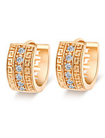 Earring Others,Jewelry 1 pair Fashionable Alloy / Zircon Gold Daily / Casual