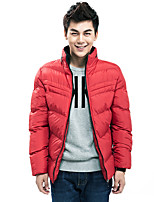Short sleeved cotton in autumn and winter fashion men's slim male tide padded cotton jacket collar youth thickening