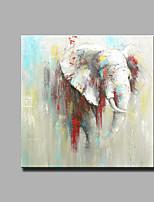 Handgeschilderde Abstract / Dieren Olie schilderijen,Modern / Klassiek Eén paneel Canvas Hang-geschilderd olieverfschilderij For