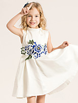 Girl's Casual/Daily Embroidered Dress,Cotton Summer / Spring White