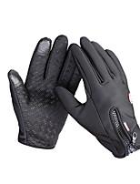 Cycling Gloves / Ski Gloves / Touch Gloves Winter Gloves Unisex Keep Warm Ski & Snowboard Red / Black / Blue Canvas M / L / XL