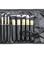 10 Makeup Brushes Set Goat Hair Portable Plastic Face Others