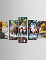 E-HOME® Stretched Canvas Art The River Pentium Horse Decoration Painting  Set Of 5