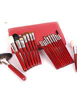 22Pcs Red Wooden Handle Needle Lines Makeup Brush Sets