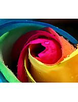 efecto 3D de gran fondo de pantalla mural de rosas de colores de pared del arte de papel no tejido de la pared decoración