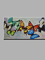 Single Modern Abstract Pure Hand Draw Ready To Hang Decorative The Butterfly Oil Painting