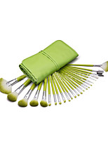 24 Makeup Brushes Set Nylon Portable Wood Face ShangYangSend Bag