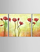 Hand-Painted Flower Oil Painting on Canvas Home Wall Art Ready to Hang Stretched Frame