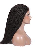 бесклеевой виргинский бразильский человеческих волос париков курчавые курчавые полные парики шнурка 14-18inch