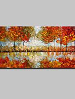 Ручная роспись Абстракция / Пейзаж / Цветочные мотивы/ботанический / Абстрактные пейзажи Картины маслом,Modern / Европейский стиль1