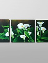 Hand-Painted Calla Lily Flower Oil Painting on Canvas Home Wall Art Ready to Hang Stretched Frame