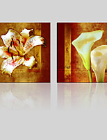 JAMMORY Canvas Set Landscape ,Two Panels Gallery Wrapped, Ready To Hang Vertical Print No Frame Lily
