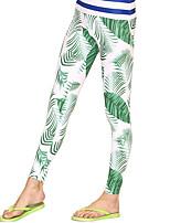 Sport Damen Strumpfhosen/Lange Radhose / Unten Taucheranzug UV-resistant / Sanft / Sonnenschutz Dive Skins Under 1.5 mm HellgrünS / M / L
