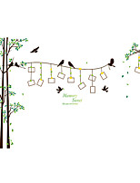 Wall Stickers Wall Decals Style Large Bird Photo Tree PVC Wall Stickers