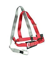ceinture arrière de sécurité de type simple connexion câble de 1,2 mètres