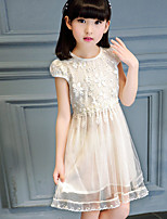 Girl's Casual/Daily Solid DressCotton Summer Pink / Beige