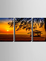 E-HOME® Stretched Canvas Art Sunset On The Shore Decoration Painting  Set Of 3