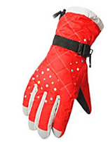 Warm And Thick Ski Gloves Water Proof And Wind Proof Winter Riding Gloves