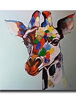Handgemalte Abstrakt / Tier Ölgemälde,Modern Ein Panel Leinwand Hang-Ölgemälde For Haus Dekoration
