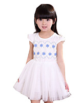 Girl's Casual/Daily Print DressOthers Summer Blue / Pink / White