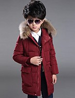 Boy's Casual/Daily Print Down & Cotton PaddedPolyester Winter Blue / Red