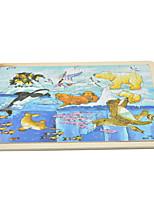 Puzzles Neuheit-Spielzeug Bausteine DIY Spielzeug Quadratisch 1 Bambus Regenbogen Neuheit-Spielzeug