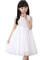 Girl's Casual/Daily Solid DressCotton Summer Pink / White
