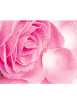 3D Effect Non-woven Large Mural Wallpaper Pink Roses Flowers Art Wall Decor Wall Paper