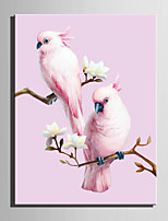 E-HOME® Stretched Canvas Art Two Birds Decoration Painting  One Pcs