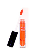 Lipstick Wet Cream Coloured gloss / Long Lasting Warm Orange
