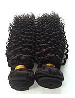 Brazilian Virgin Hair Kinky Curly Virgin Hair Grade 2PCS 7A Unprocessed Brazilian Human Hair Curly Weave