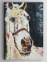 Oil Painting Impression Horse Hand Painted Canvas Painting with Stretched Framed Ready to Hang