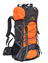 60 L Backpack / Rucksack Camping & Hiking / Traveling Outdoor / Performance Quick Dry / Shockproof BlueNylon
