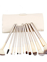 12pcs Makeup Brushes set Professional blush/powder/foundation/concealer brush shadow/eyeliner brush with white bag