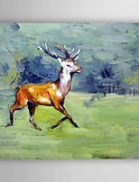 Oil Painting Impression Deer Hand Painted Canvas Painting with Stretched Framed Ready to Hang