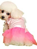 Katzen / Hunde Kostüme / Kleider Rosa Hundekleidung Winter / Frühling/Herbst SchleifeModisch / Lässig/Alltäglich / Urlaub / warm halten /